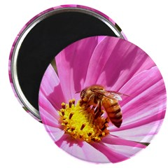 Honey Bee on Pink Wildflower Magnet