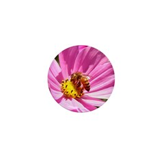 Honey Bee on Pink Wildflower Mini Button (100 pack