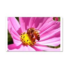 Honey Bee on Pink Wildflower Car Magnet 20 x 12