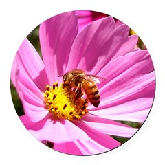 Honey Bee on Pink Wildflower Round Car Magnet