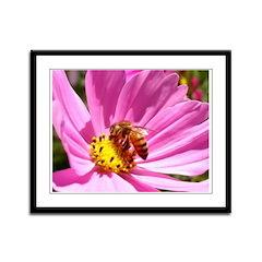 Honey Bee on Pink Wildflower Framed Panel Print