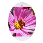 Honey Bee on Pink Wildflower Ornament (Oval)