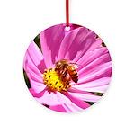 Honey Bee on Pink Wildflower Ornament (Round)