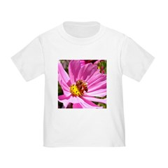 Honey Bee on Pink Wildflower T