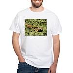Bullfrog in green is King White T-Shirt