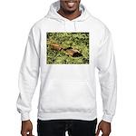 Bullfrog in green is King Hooded Sweatshirt