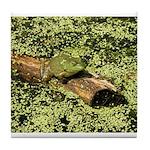 Bullfrog in green is King Tile Coaster