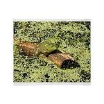 Bullfrog in green is King Throw Blanket