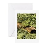 Bullfrog in green is King Greeting Cards (Pk of 10