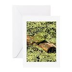 Bullfrog in green is King Greeting Card