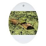 Bullfrog in green is King Ornament (Oval)