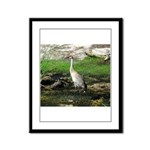 Sandhill Crane on Patrol LS Framed Panel Print