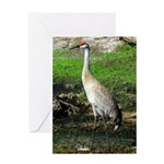 Sandhill Crane on Patrol LS Greeting Card