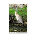 Sandhill Crane on Patrol LS Wall Decal