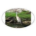 Sandhill Crane on Patrol LS Sticker