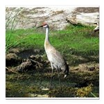 Sandhill Crane on Patrol LS Square Car Magnet 3