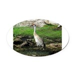 Sandhill Crane on Patrol LS Oval Car Magnet