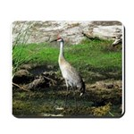 Sandhill Crane on Patrol LS Mousepad