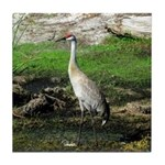 Sandhill Crane on Patrol LS Tile Coaster