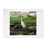 Sandhill Crane on Patrol LS 5'x7'Area Rug