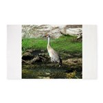 Sandhill Crane on Patrol LS 3'x5' Area Rug