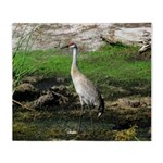 Sandhill Crane on Patrol LS Throw Blanket