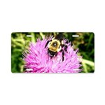 Bumble bee on Magenta Thistle Flower Aluminum Lice