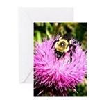 Bumble bee on Magenta Thistle Flower Greeting Card