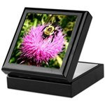 Bumble bee on Magenta Thistle Flower Keepsake Box