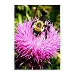 Bumble bee on Magenta Thistle Flower 5'x7'Area Rug