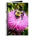 Bumble bee on Magenta Thistle Flower Journal