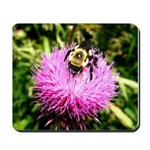 Bumble bee on Magenta Thistle Flower Mousepad
