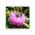 Bumble bee on Magenta Thistle Flower Sticker
