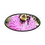 Bumble bee on Magenta Thistle Flower Patches