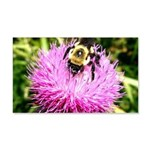 Bumble bee on Magenta Thistle Flower Wall Decal