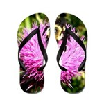 Bumble bee on Magenta Thistle Flower Flip Flops