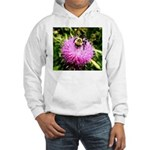 Bumble bee on Magenta Thistle Flower Hoodie
