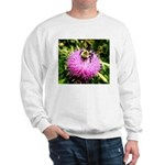 Bumble bee on Magenta Thistle Flower Sweatshirt