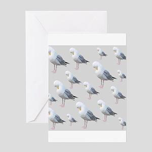 Preening Gulls. Greeting Card