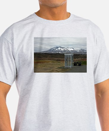 Only In Iceland Ash Grey T-Shirt