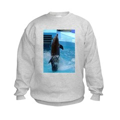 dolphin 3 Sweatshirt