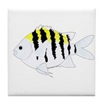 Sergeant Major Damselfish fish Tile Coaster