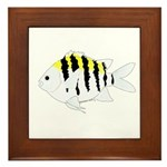 Sergeant Major Damselfish fish Framed Tile