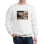 '65 Carousel Park Sweatshirt