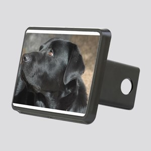 """""""Turbo The Great"""" Rectangular Hitch Cover"""