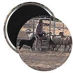 Herding Dog Art Magnet