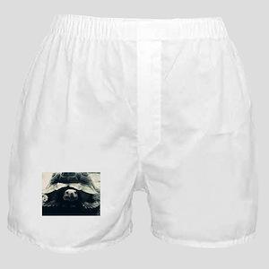 BW Tortoise Boxer Shorts