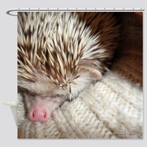 .prickly hedgie in a sleeve. Shower Curtain