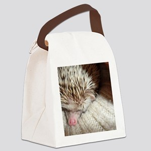 .prickly hedgie in a sleeve. Canvas Lunch Bag