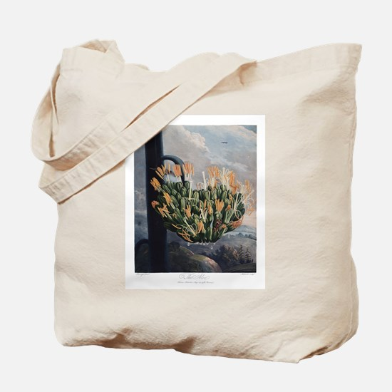 The Aloe, The Temple of Flora Tote Bag